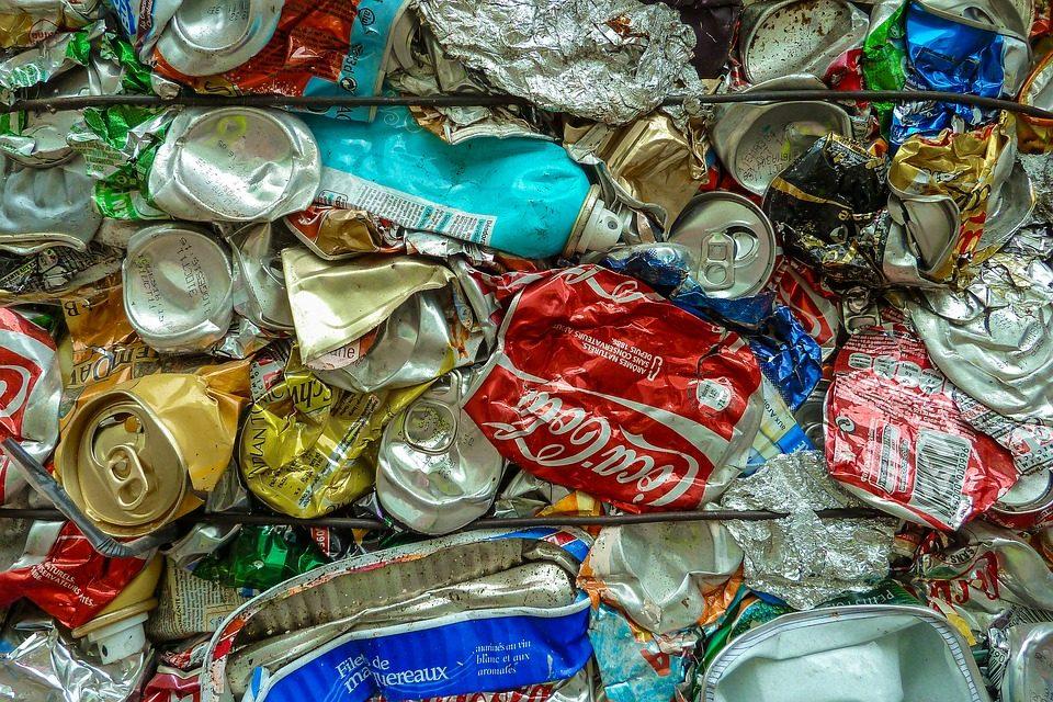 Ekosystem uczy dzieci segregować śmieci