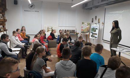 Wycieczka klas Vb i Vc do Nadleśnicwa Milicz – Dom Drzewa.