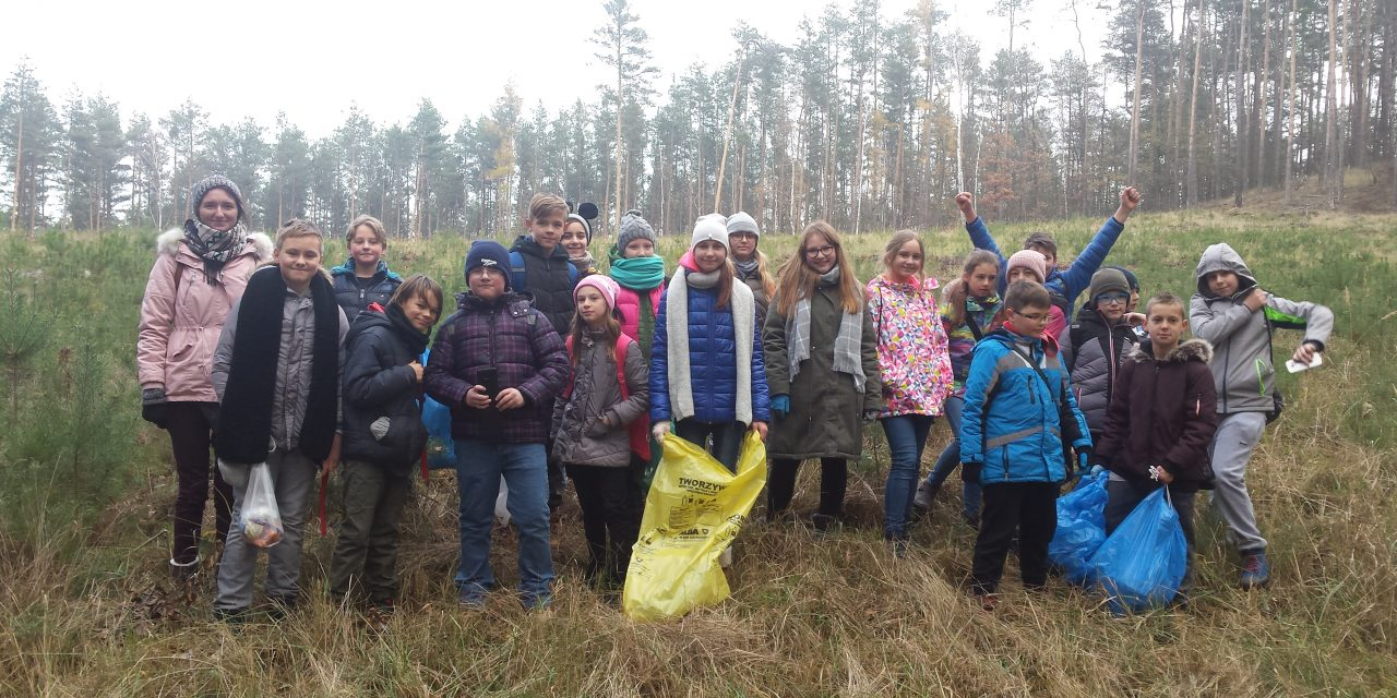 6a sprząta las i go… dokarmia
